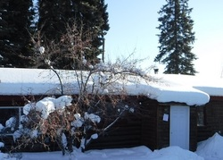 Fairbanks #29301830 Foreclosed Homes